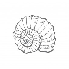 Couture Creations Mini Stamp - SM - Fibonacci Shell (1pc)