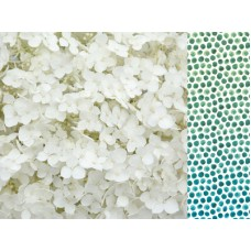 Kaisercraft Morning Dew 12x12 Scrapbook Paper - Inhale