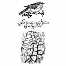 Stamperia - Rubber Stamp 10x16cm - Cosmos Bird